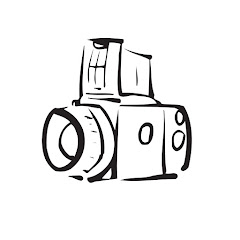 The Camera Store Shorts
