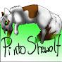 PintoShewolf