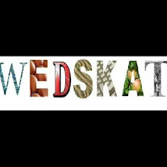 SwedSkate