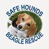 SafeHounds