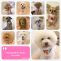 Furufuru Dog Salon & Spa