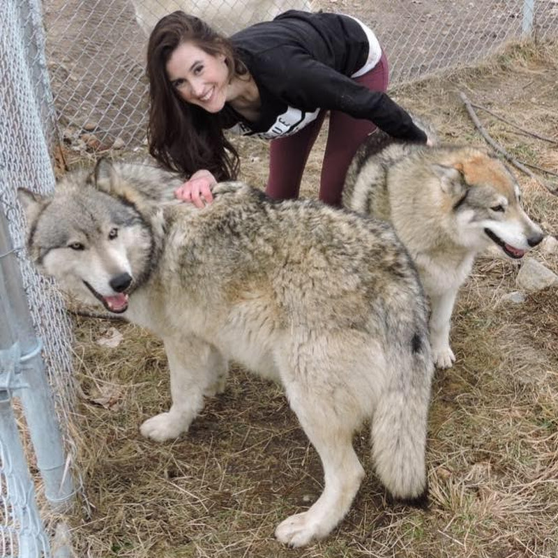 Sarah and the Wolves