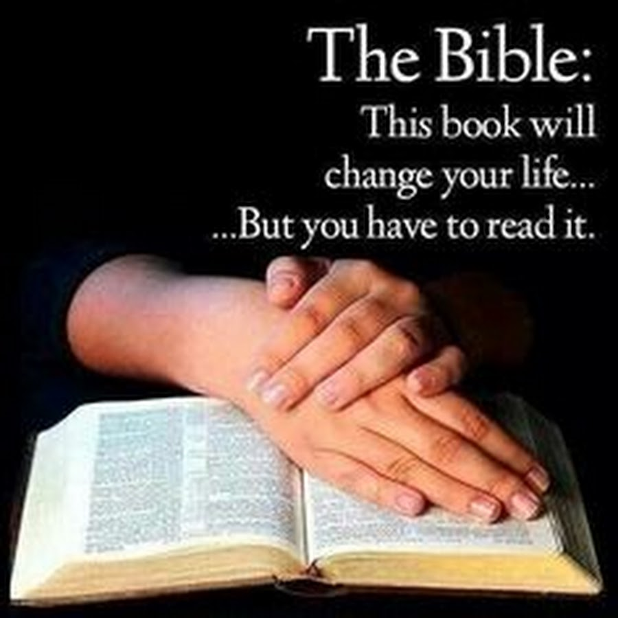 Image result for we should read the bible