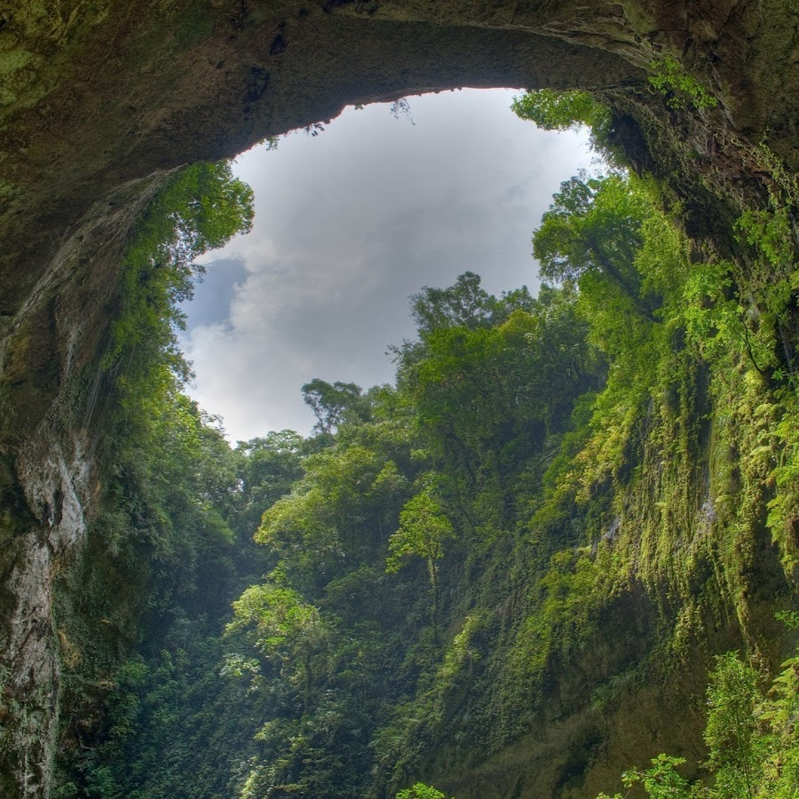 Hamo - YouTube