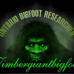 timbergiantbigfoot