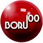 BORU100