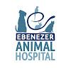 Ebenezer Animal Hospital