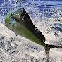 Quepos Fish Adventure