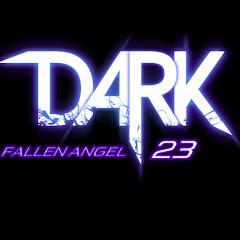 darkfallenangel23