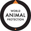 World Animal Protection USA