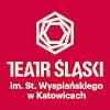 Teatr Śląski   Silesia Theatre