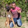 تدريب كلاب هوم دوجز دمنهور / كابتن ابونور