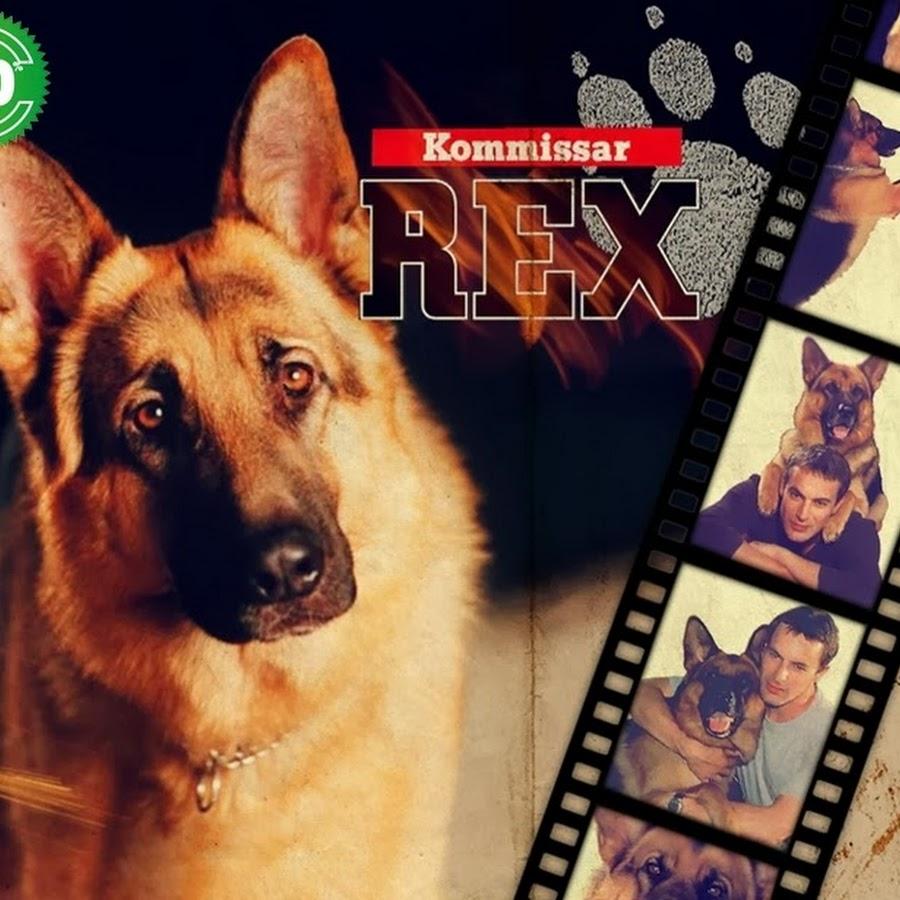 Sendetermine Kommissar Rex