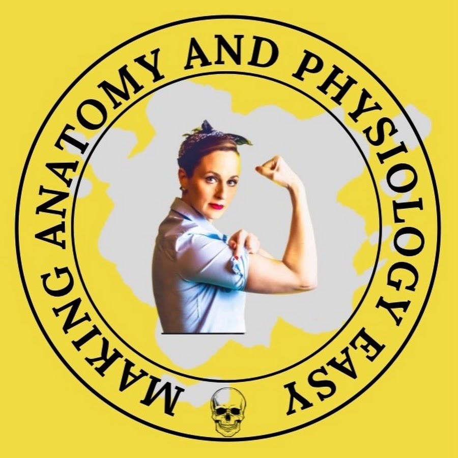 Anatomygmc Youtube