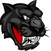 Riceville Wildcats