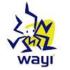 wayi2010