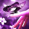 Nuria Lupus