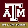 TAMU soilcrop