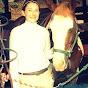 bornforhorses45