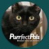 Purrfect Pals Cat Sanctuary and Adoption Centers