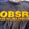 RCM-SAR Station 33 - Oak Bay