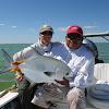 casablancaflyfish
