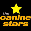 The Canine Stars