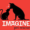 Imagine Pet Rescue —