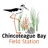 Chincoteague Bay Field Station