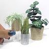 Real Life Dollhouse Miniatures