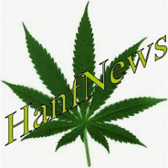 HanfNews