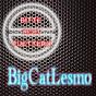 BigCatLesmo