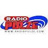 NUS RadioPulze