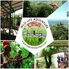 Osa Canopy Tour Costa Rica