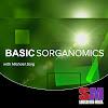 Basic Sorganomics with Michael Sorg