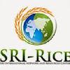 India SRI videos