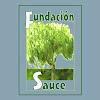 FundacionSauce