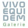 Galerie VivoEquidem