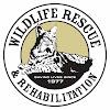 Wildlife Rescue & Rehabilitation, Inc.