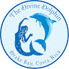 The Divine Dolphin