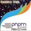 webpnpm