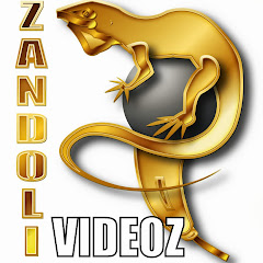 ZANDOLYWOOD