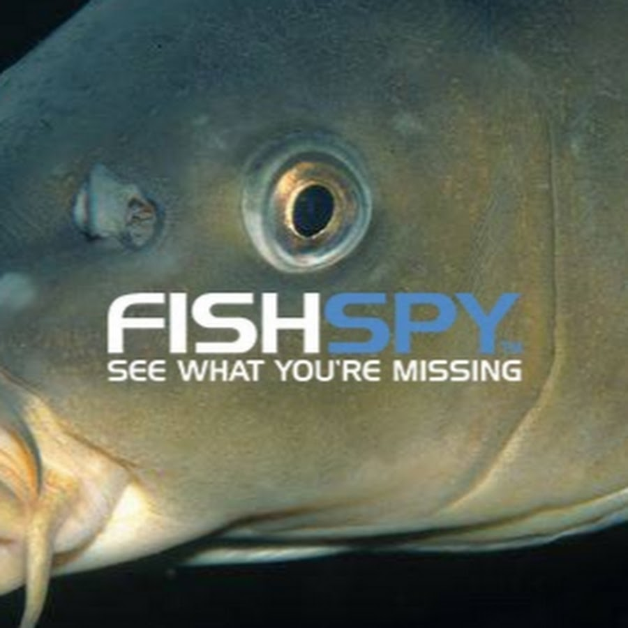 FISHSPY - Camera/Photo - 275 Photos | Facebook