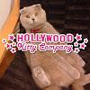 HollywoodKittyCo