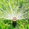 Denver Best Sprinklers