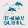 Eco-Alianza Loreto A.C.