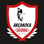youtube donate - AkCaKoCa GAMING