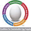 SustainableEggCltn