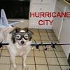 hurricanecitydotcom