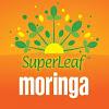 SuperLeaf Moringa